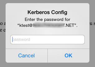 iOS-Kerberos-SSO